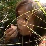 Une petite fille survit 11 jours dans le froid sibérien grâce à son chien