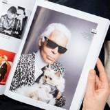 Choupette Lagerfeld : portrait de la chatte la plus célèbre du XXIe siècle