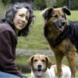 """Eduquer son chien : la méthode du """"shapping"""" selon Kathy Sdao"""