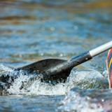 Les kayakistes voient un sac flotter au milieu de la rivière : en s'approchant, ils réalisent avec horreur qu'il bouge !