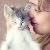 Sentir le bébé chat, vous en rêviez, un parfumeur l'a fait !