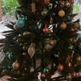 Dans son salon, elle voit son sapin de Noël bouger : elle pense que c'est un chat, mais pas du tout !
