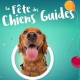 Jusqu'au 2 octobre 2021, c'est la fête des chiens guides !