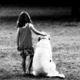 Un chien sauve une petite fille atteinte du diabète