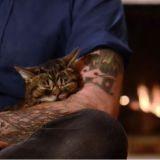 Une petite séance de ronronthérapie avec Lil Bub, ça vous dit ? (Vidéo du jour)