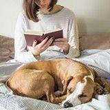 Ces livres récompensés par le Prix littéraire de la Société Centrale Canine que vous devez lire !