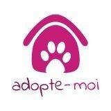 Adopte-Moi : enfin une appli pour adopter son animal !