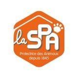 Vous aussi, participez à la 3ème cani-course de la SPA au profit des animaux !