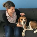 Job de wouf : ce chien est community manager !