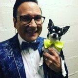 Faites connaissance avec Lou, la Chihuahua qui danse avec les stars !