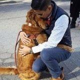 Cette chienne fait des câlins gratuits aux passants dans la rue !