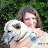 Magnifique : une jeune cycliste interrompt son tour du monde pour sauver une chienne errante