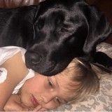 Gravement malade, un enfant a eu la vie sauve grâce à son chien