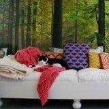 Comment transformer votre intérieur en paradis pour chat ?