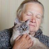 Tout un village se mobilise pour une mamie et ses 30 chats expulsés de leur maison