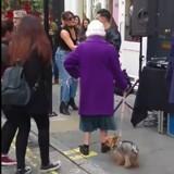 Une mamie promène son chien : tout d'un coup elle s'arrête net et ce qu'elle fait épate tous les passants