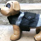 Manteau pour chien : utile ou futile ?