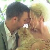 Un couple célèbre son mariage entouré de 1100 chats