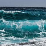 Des plaisanciers aperçoivent une chose flotter dans l'eau, ils sont choqués de leur découverte
