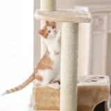 Quel mobilier pour enrichir le milieu de votre chat ?