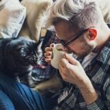 Mon chat peut-il boire du thé ?