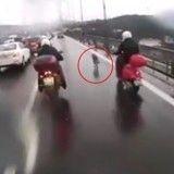 Un gang de motards escorte un chien errant pour lui sauver la vie