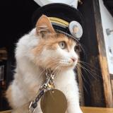 Faites connaissance avec Nitama, l'adorable nouveau chef de gare japonais !