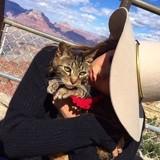 En deuil, Nina Dobrev rend un hommage émouvant à son chat mort à 18 ans