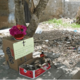 En Colombie, un communauté organise des funérailles pour un chien errant