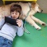 Autiste, ce jeune garçon a besoin de son chien à l'école mais on lui refuse