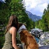 Elle parcourt l'Europe en van avec sa chienne « dog-trotteuse »