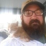 Ce petit chaton trouvé au milieu de nulle part pense que cet homme barbu est sa maman