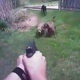 Un policier se filme en train de tirer sur un chien