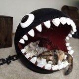15 paniers pour chat super originaux que votre matou va vous réclamer !