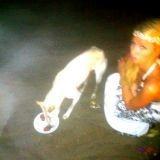Paris Hilton contre l'empoisonnement des chiens errants à Bali