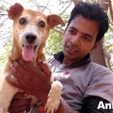 Un miracle ! Cette chienne retrouvée presque morte est totalement métamorphosée (Vidéo)