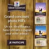 Concours : 20 sacs de croquettes Hill's Ideal Balance Sans Céréales à gagner !