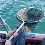 Ombre au milieu d'un lac : le pêcheur s'approche, jette son filet et n'en revient pas de ce qu'il remonte