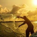 Du sang partout : il part pêcher, voit une ombre dans l'eau et se met à crier en sentant une intense douleur