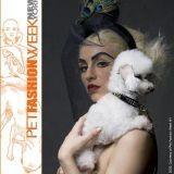 Luxe et démesure à la Pet Fashion Week !