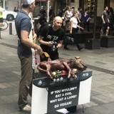 L'association PETA cuit un chien au barbecue en plein milieu de la rue