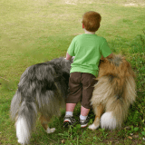 Pourquoi les enfants se confient plus à leur animal de compagnie qu'à leur famille ?