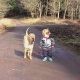 Un petit garçon, son vieux chien, 2 adorables meilleurs amis (Vidéo du jour)