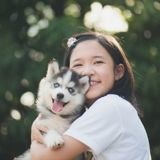 Covid-19 : la Chine exclut les chiens et chats de leur liste d'animaux comestibles