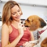 Comment changer l'alimentation d'un chien qu'on vient d'adopter ?