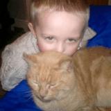 Une famille décide d'adopter un chat, et revient avec une énorme surprise !
