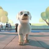 Regardez cet émouvant court métrage sur Pip, un petit toutou qui voulait être guide d'aveugle (Vidéo)