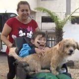 Ce chien adore quand son petit maître rentre de l'école (Vidéo)
