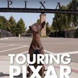Découvrez le chien qui a inspiré celui du film Coco, le prochain Disney-Pixar !