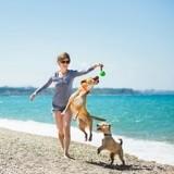 Tout ce qu'il faut savoir avant de partir en vacances avec son chien cet été !